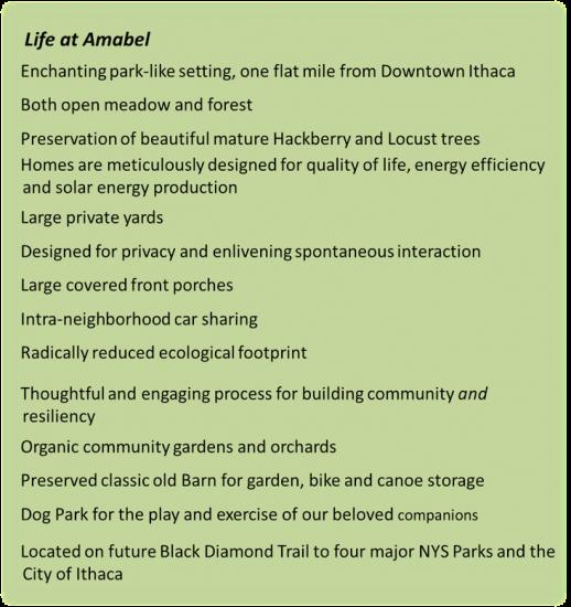 Life at Amabel